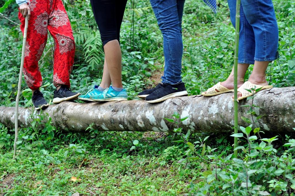 Tour đi bộ chinh phục đỉnh Pù Luông