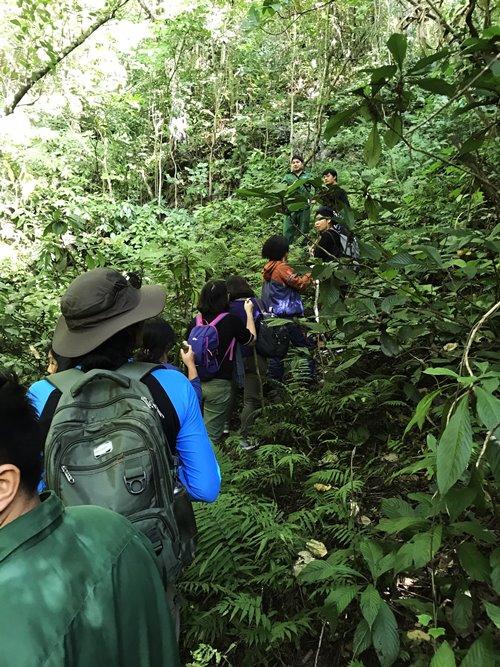 Du lịch Lâm Bình - trekking