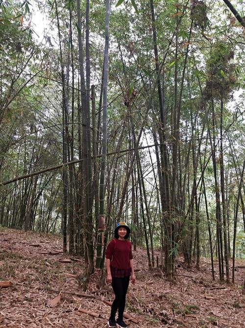 Xóm Sưng